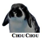 Chou Chou from Rabbit Bites