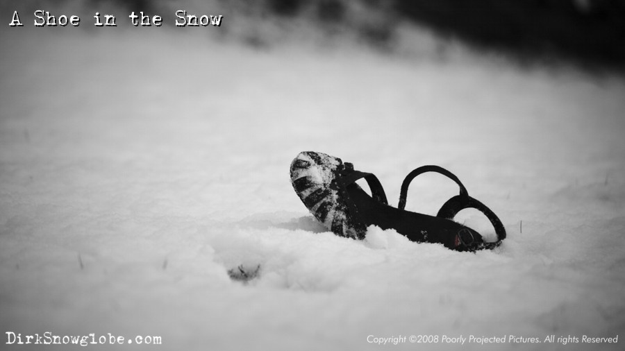 The Murder of Dirk Snowglobe - photo 2