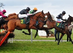Competition - Horse Racing