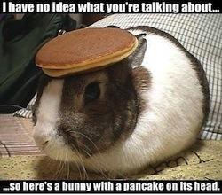 Pancake Bunny - Know Your Meme