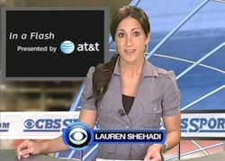 In a Flash - Lauren Shehadi
