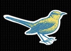 the-mockingbirds-new-media