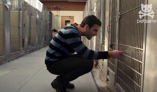 Zachary Quinto's Short Film Comes To Fishbowl's PETSAMI