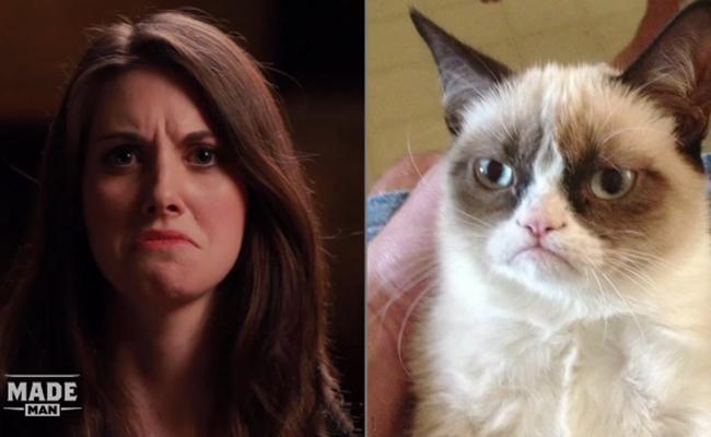 grumpy-cat-alison-brie