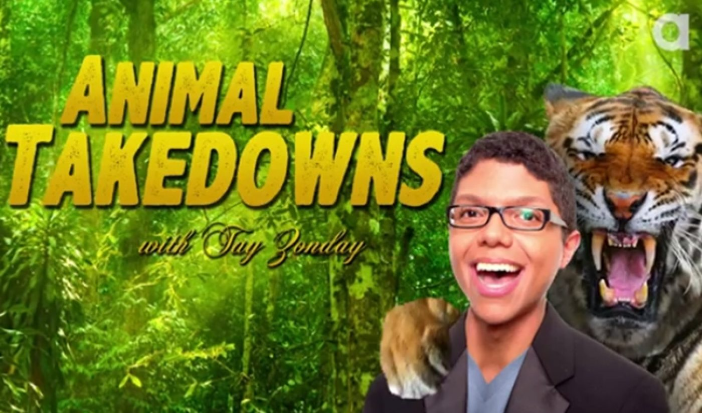 Discovery's Latest Online Vertical Is Pet-Powered Animalist