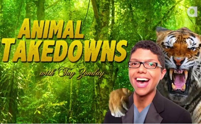 animal-takedowns-tay-zonday-animalist