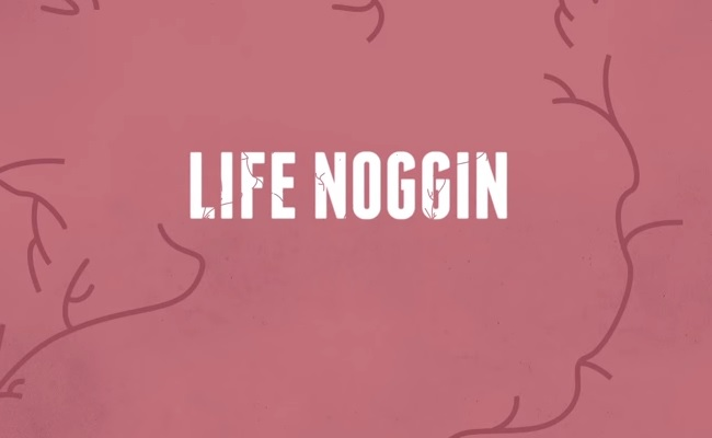Discovery, TestTube Launch Animated Educational Series 'Life Noggin' by Bree Brouwer of Tubefilter