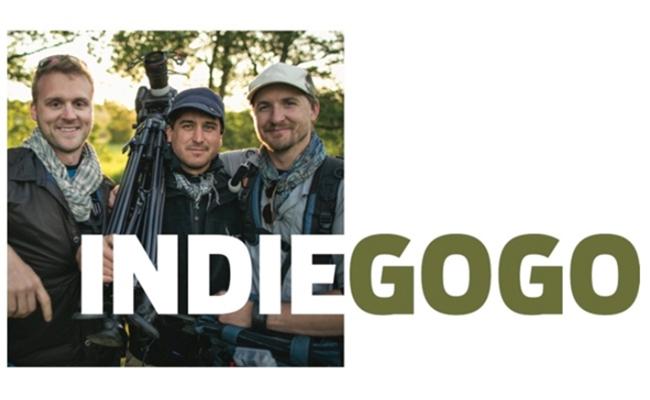 indiegogo-guys