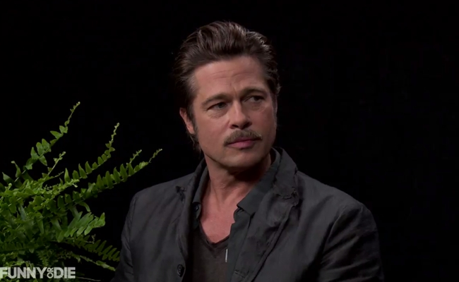 Zach Galifianakis Roasts Brad Pitt, Louis C.K. On 'Between Two Ferns'