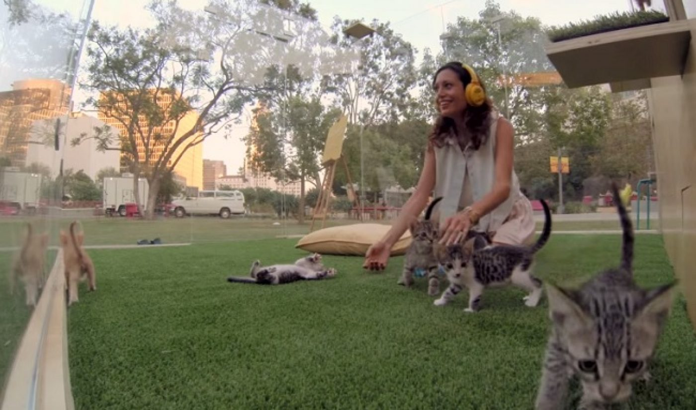 SoulPancake Gives Hands-On Kitten Therapy To Stressed-Out LA Citizens