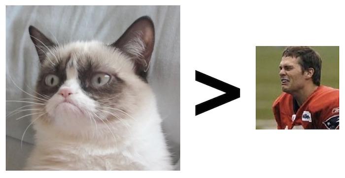 cat-and-Tom-Brady