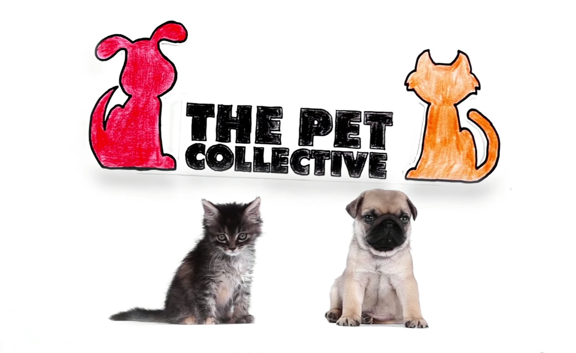 pet-collective