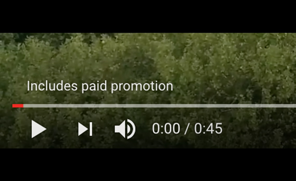 paid-promotion