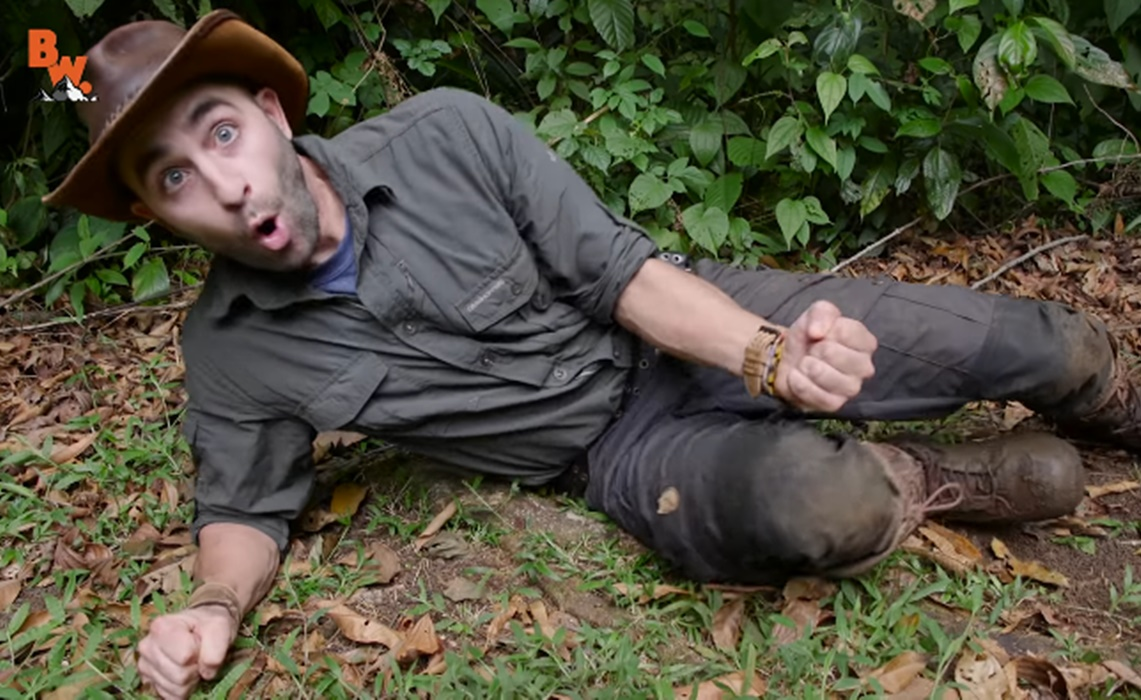 brave-wilderness-bullet-ant
