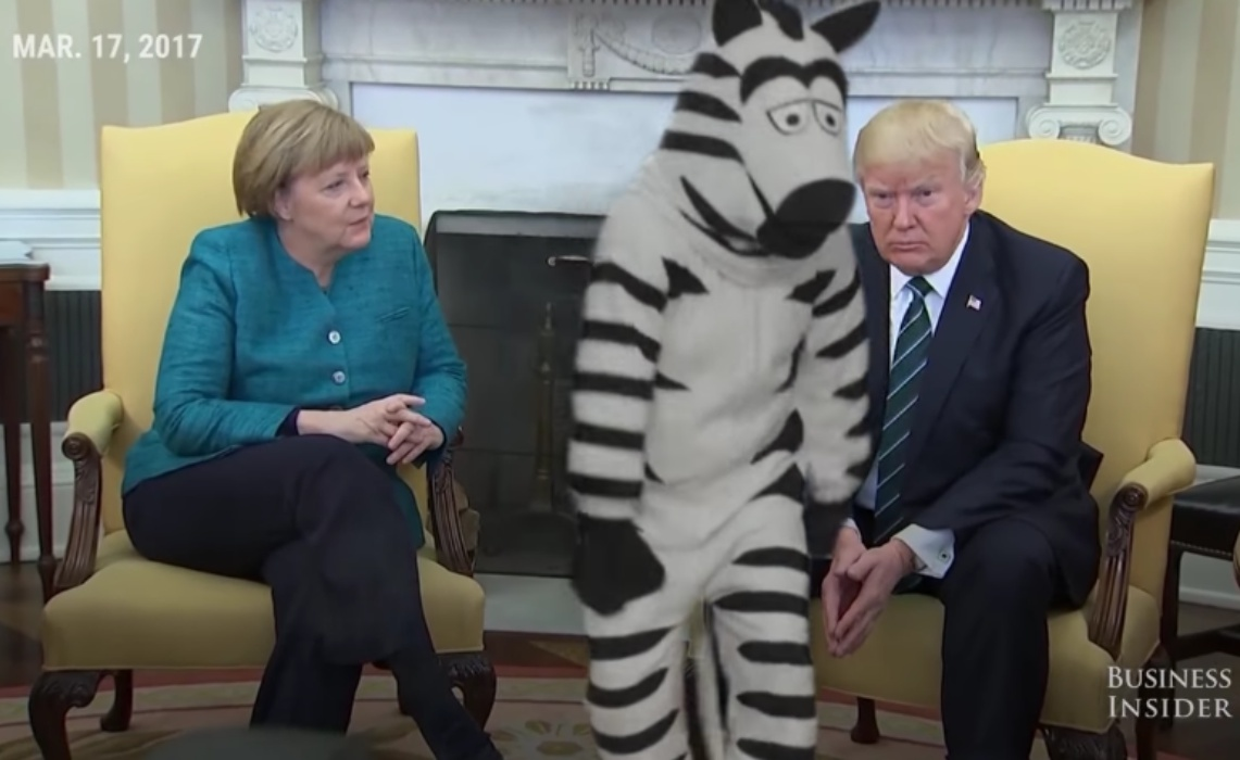 john-oliver-dancing-zebra