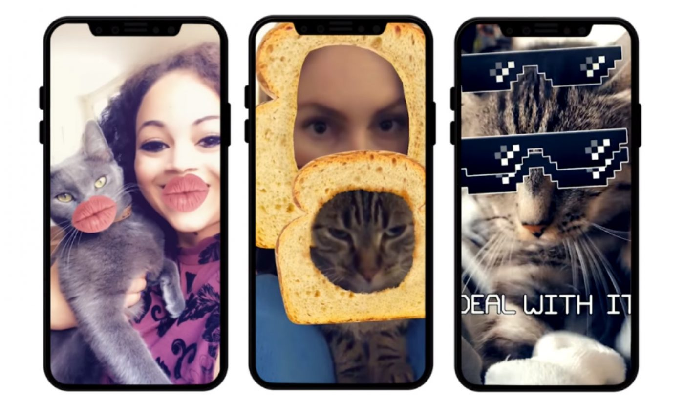 Snapchat Just Released A Meme-Filled Set Of Lenses For Cats