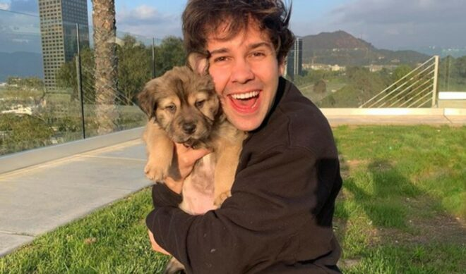 David Dobrik Tapped To Co-Host Dodgeball Competition Series On Discovery Channel