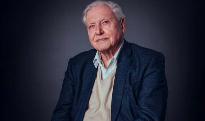 David Attenborough Departs Instagram Mere Months After Record-Breaking Foray